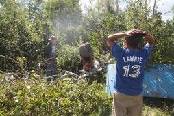 Ty Clearsky, left, and Kobe McKee watch while a neighbour uses a chainsaw to cut a fallen tree on Jason McKee's property on Tuesday morning. The bush beside McKee's home was damaged when a tornado touched down in Waywayseecappo First Nation on Monday night. (Eva Wasney/The Brandon Sun)
